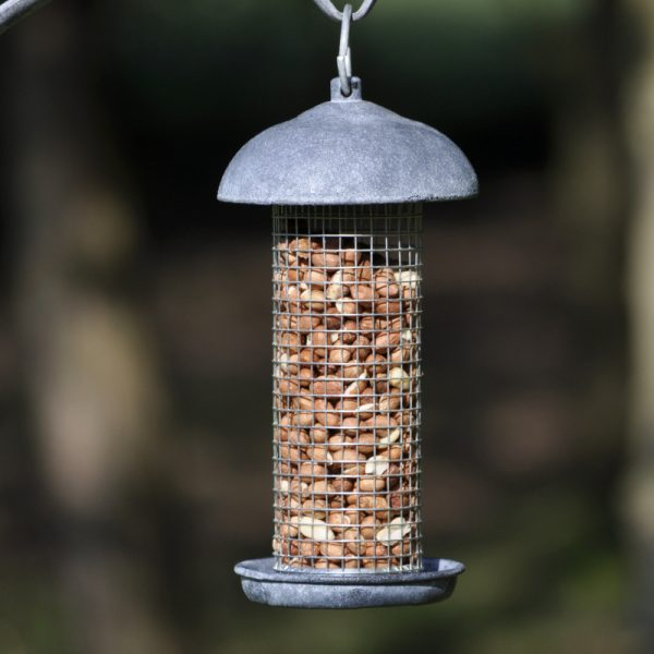 Peanut feeder for Garden Bird Bath Feeders