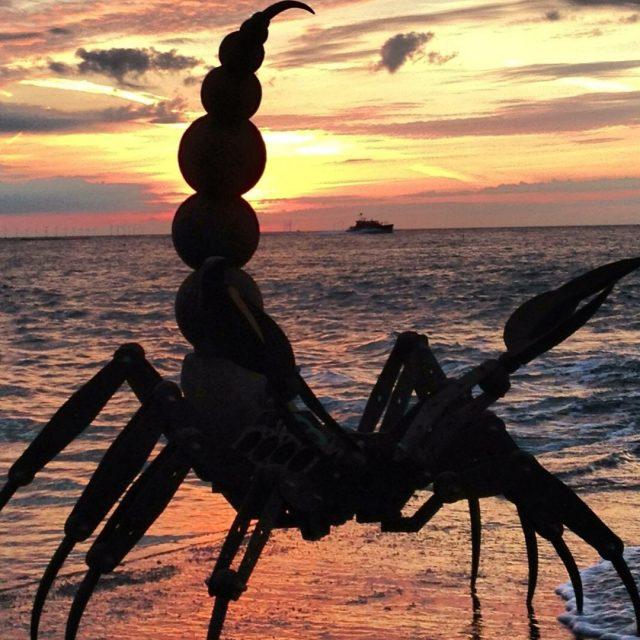 Scorpion by Ian Gill