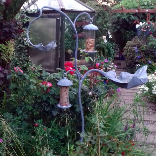 Bird Bath Combo by Ian Gill