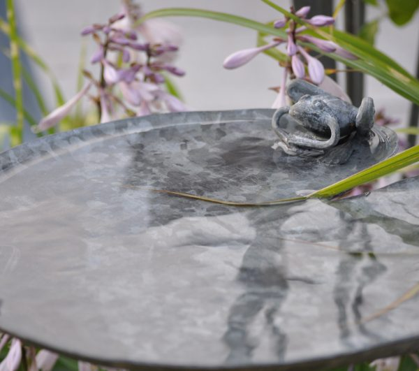 Frog Lily pad bird bath