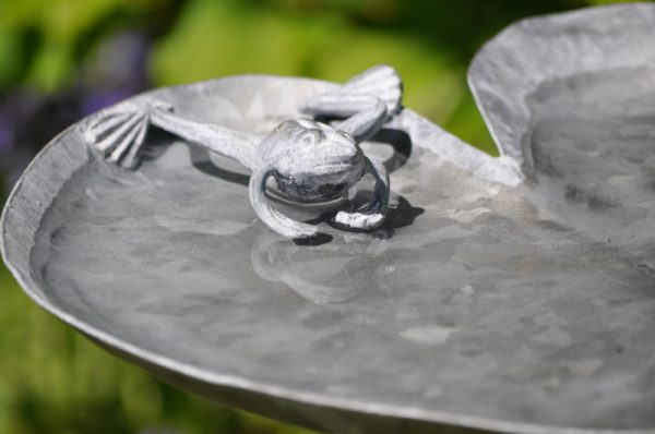 Frog Lily pad garden bird bath by Ian Gill